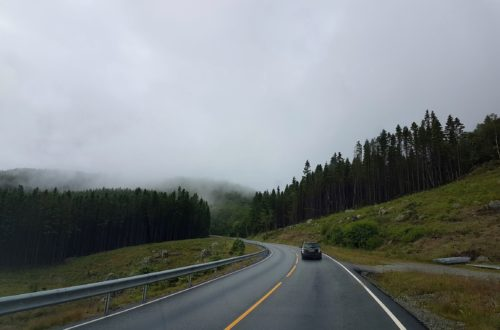 Straße Norwegen in Wald bei mystischen Nebel