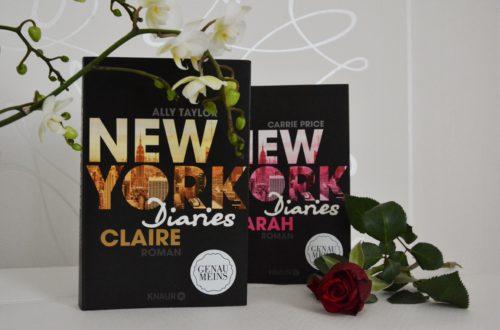 Buchreihe New York Diaries Review