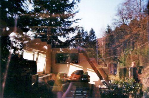 Fensterscheibe, Spiegelung, Raum, Natur, Garten