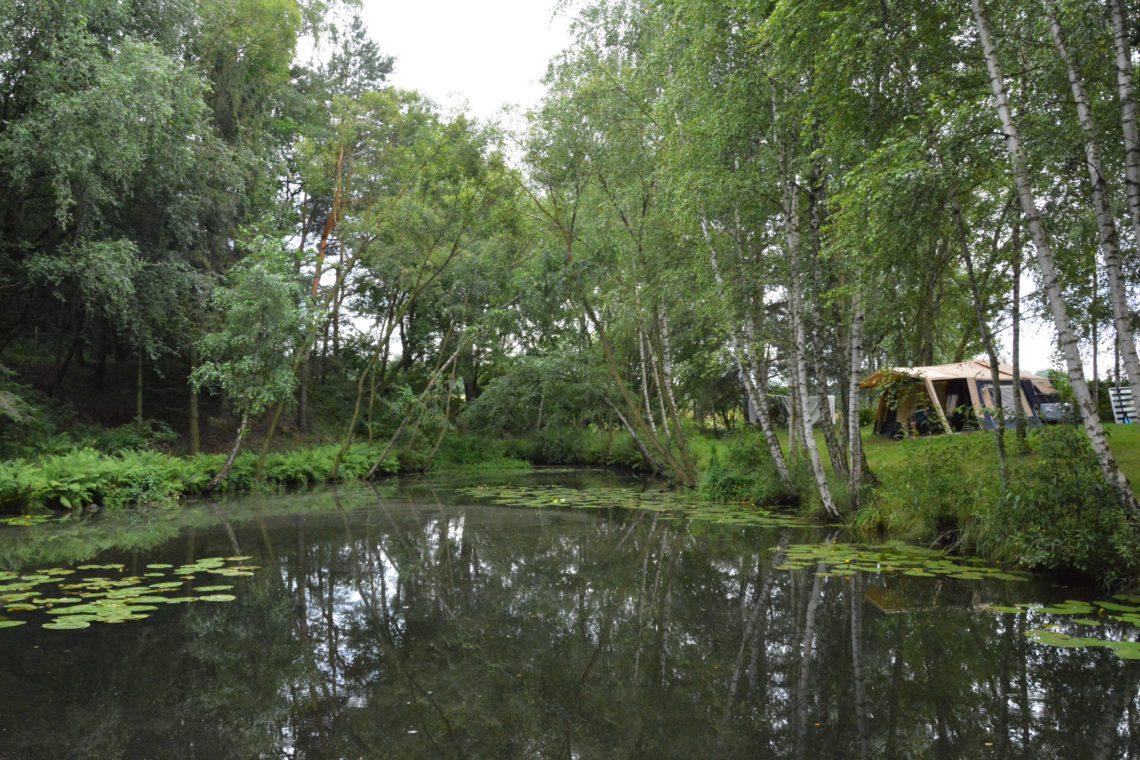 Campingplatz Polen Waldsee