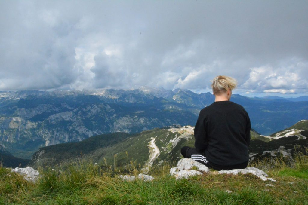 Ausblick Vogel Triglav Gebirge Slowenien
