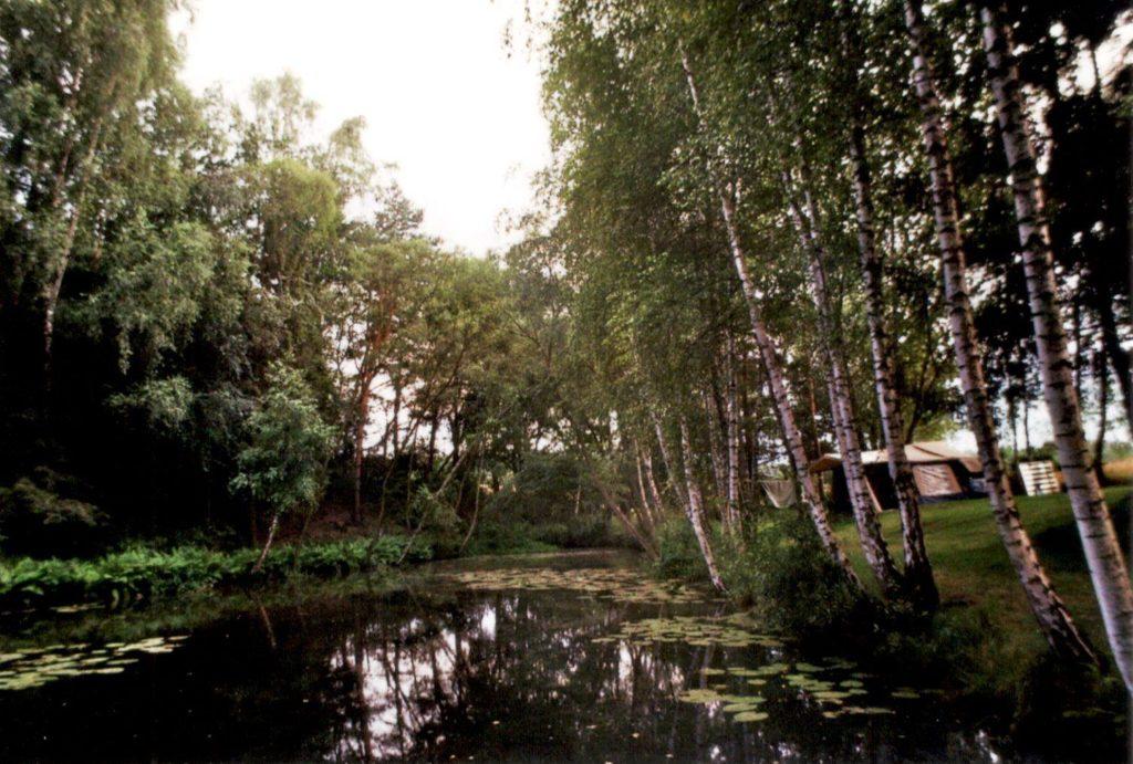 Analog Film Polen Campingplatz